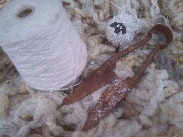 De l'ovella al fil