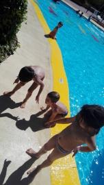 A la piscina també hi ha insectes!