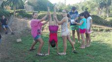 acrobates1